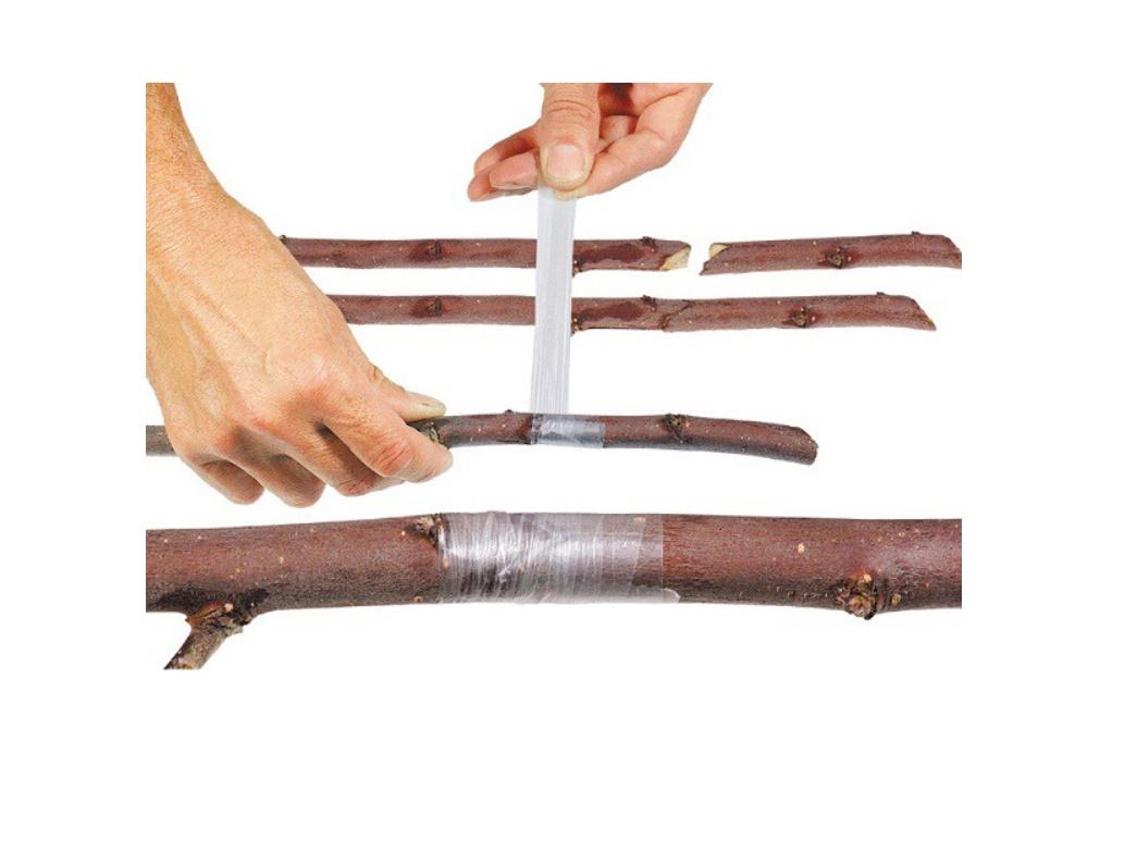Cleste profesional de altoit cu 3 cutite U V Omega + banda pentru altoit